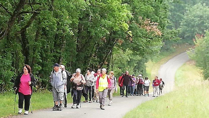 Thézac. Programme des randonnées - ladepeche.fr