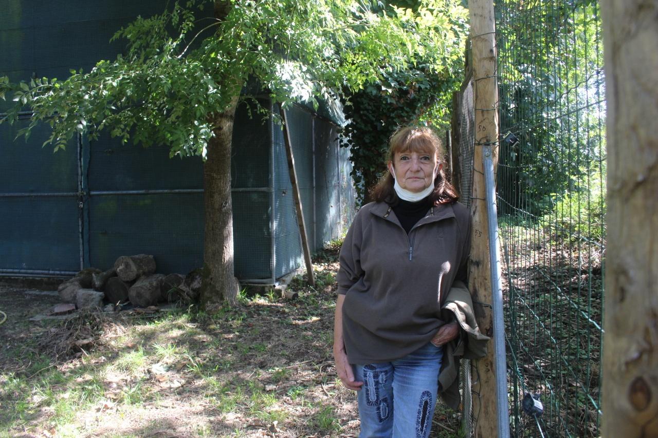 Lot-et-Garonne. Le centre de soins de la faune sauvage lauréat du budget participatif